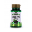 Windmill Grape Seed Extract 100mg Capsules- 60ct