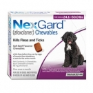 NexGard For Dogs (24.1-60lbs) (Purple)- 6 Dose Pack