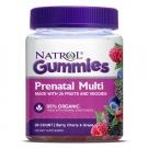 Natrol Prenatal Multivitamin Gummy 90 Count