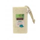 EcoTools Loofah Bath Sponge ** Extended Lead Time **