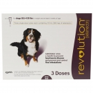 Revolution (For Dogs 85.1 - 130 lbs) - 3 Month Pack(Plum)