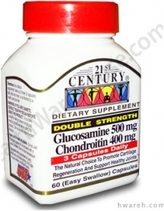 Glucosamine/Chondroitin Double Strength Supplement - 60 Capsules- DISCONTINUED
