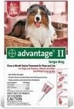 Advantage II  (For Large Dogs, 21-55 lbs) - 4 Pack (Red)