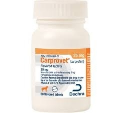Carprovet (Carprofen) 25mg Flavored Tablets for Dogs