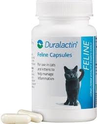 Duralactin Feline Capsules, 60 Count