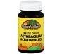 Natures Blend Acidophilus Lactobacillin Capsules 100ct