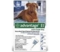 Advantage II  (For Extra Large Dogs, Over 55 lbs) - 4 Pack (Blue)
