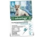 Advantage II  (For Medium Dogs, 11-20 lbs) - 6 Pack (Teal)