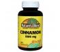 Nature's Blend Cinnamon 1000mg, 100ct Capsules